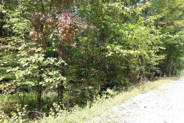 Land - Narrows, VA (photo 3)