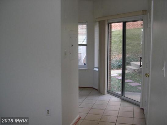Garden 1-4 Floors, Contemporary - ALEXANDRIA, VA (photo 5)