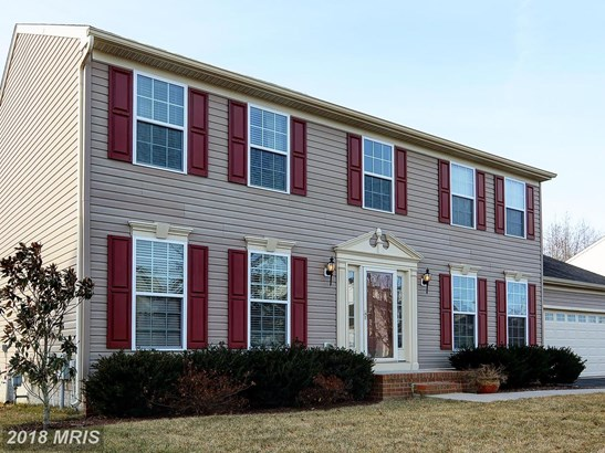 Transitional, Detached - EASTON, MD (photo 1)