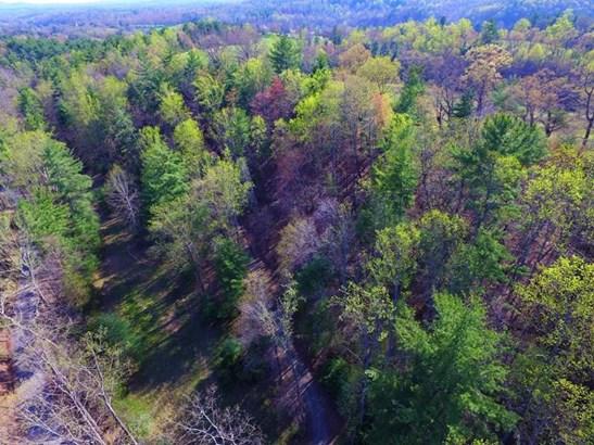 Land (Acreage), Lots/Land/Farm - Callaway, VA (photo 4)