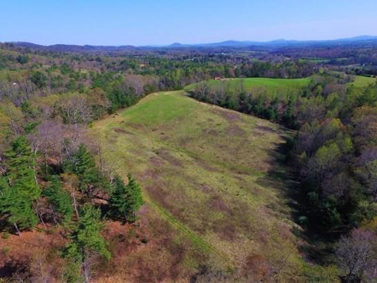 Land (Acreage), Lots/Land/Farm - Callaway, VA (photo 5)