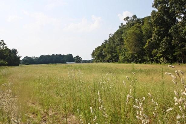 Unimprvd Lots/Land - Mardela Springs, MD (photo 4)
