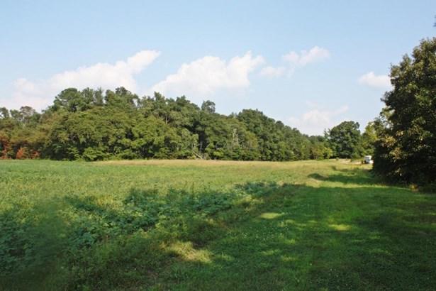 Unimprvd Lots/Land - Mardela Springs, MD (photo 5)