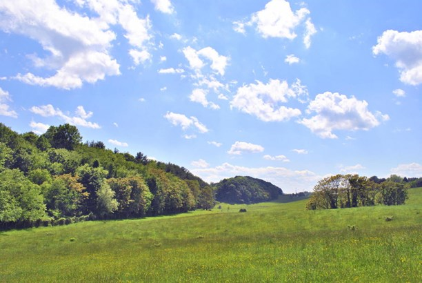 Land (Acreage), Lots/Land/Farm - Christiansburg, VA (photo 1)