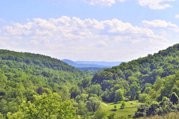 Land (Acreage), Lots/Land/Farm - Christiansburg, VA (photo 3)