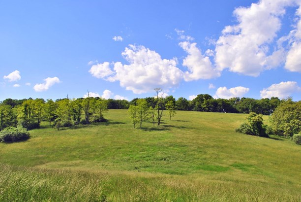 Land (Acreage), Lots/Land/Farm - Christiansburg, VA (photo 4)