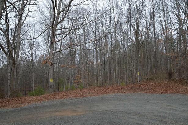 Land - Allisonia, VA (photo 1)
