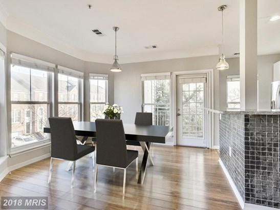 Garden 1-4 Floors, Contemporary - FAIRFAX, VA (photo 5)