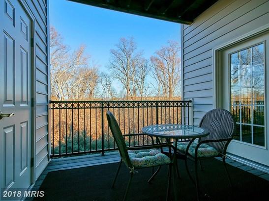 Garden 1-4 Floors, Contemporary - POTOMAC FALLS, VA (photo 3)