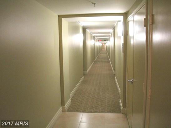 Hi-Rise 9+ Floors, Contemporary - ALEXANDRIA, VA (photo 5)