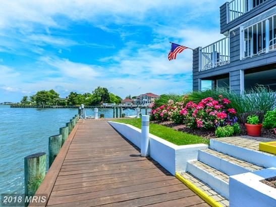 Garden 1-4 Floors, Contemporary - OCEAN CITY, MD (photo 5)