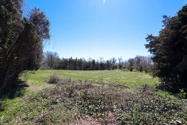 Residential Vacant Lot - Lower Township (photo 3)