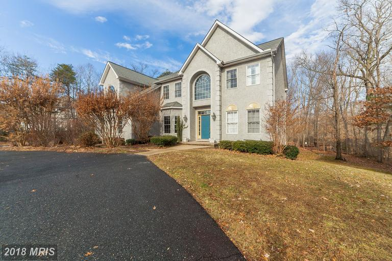 Contemporary, Detached - ELKTON, MD (photo 1)