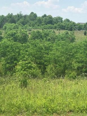 Land (Acreage), Lots/Land/Farm - Goodview, VA (photo 3)