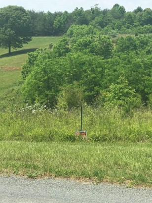 Land (Acreage), Lots/Land/Farm - Goodview, VA (photo 5)