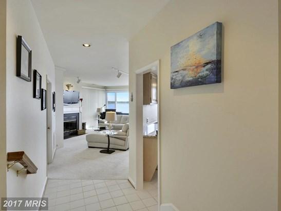 Garden 1-4 Floors, Contemporary - GRASONVILLE, MD (photo 4)