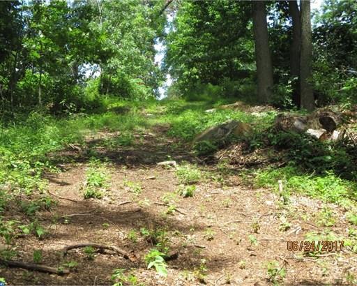 Lot-Land - SPRING MOUNT, PA (photo 5)