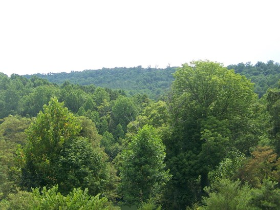 Lot, Lots/Land/Farm - Gretna, VA (photo 5)