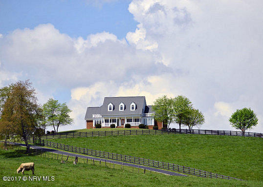 Cape Cod, Detached - Christiansburg, VA (photo 4)