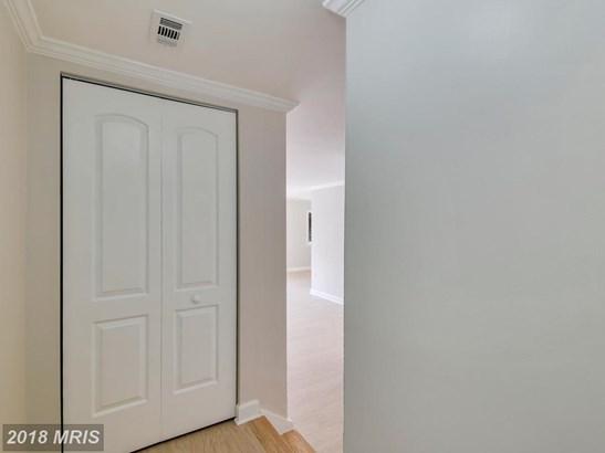 Garden 1-4 Floors, Other - MONTGOMERY VILLAGE, MD (photo 2)