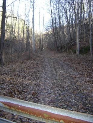 Land (Acreage), Lots/Land/Farm - Troutville, VA (photo 3)