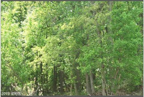 Lot-Land - NANJEMOY, MD (photo 1)