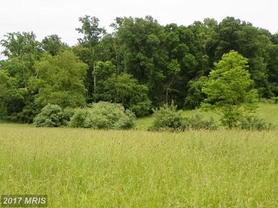 Lot-Land - AMISSVILLE, VA (photo 1)