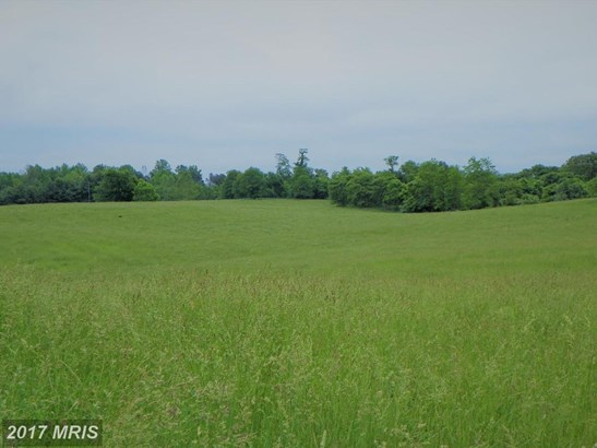 Lot-Land - AMISSVILLE, VA (photo 4)