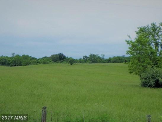 Lot-Land - AMISSVILLE, VA (photo 5)