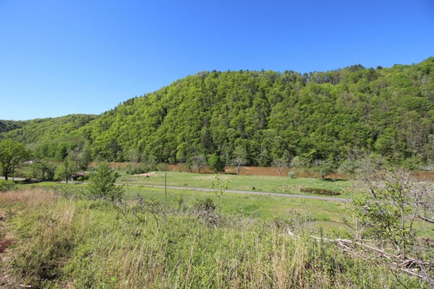 Ranch, Detached - Allisonia, VA (photo 4)