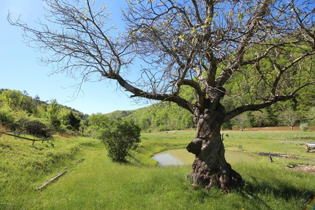 Ranch, Detached - Allisonia, VA (photo 5)