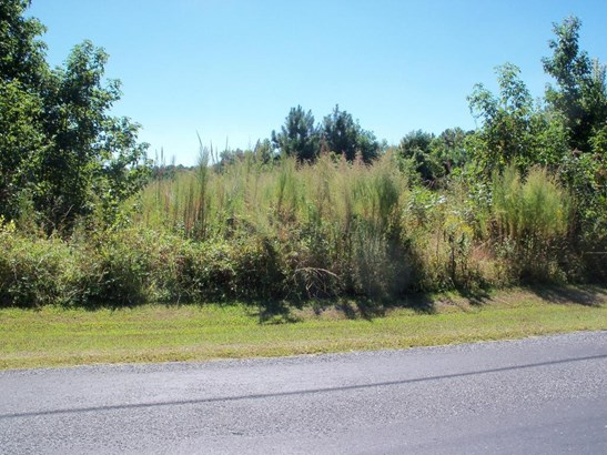 Unimprvd Lots/Land - Tyaskin, MD (photo 1)