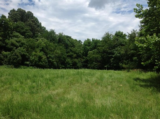 Land (Acreage), Lots/Land/Farm - Floyd, VA (photo 2)