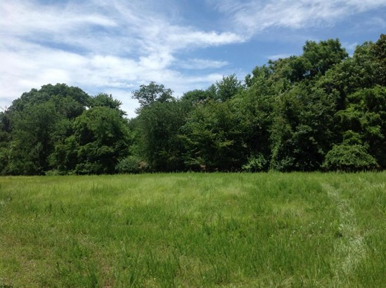 Land (Acreage), Lots/Land/Farm - Floyd, VA (photo 3)