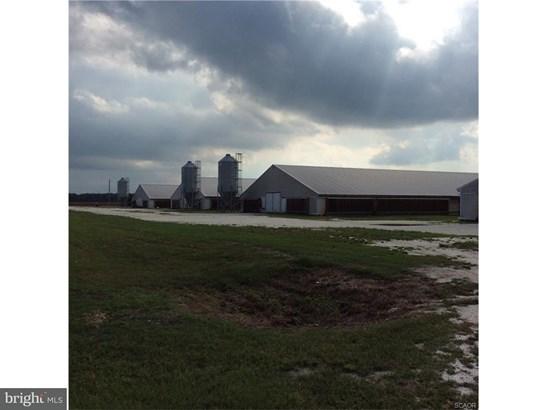 Farm - MILLSBORO, DE (photo 4)