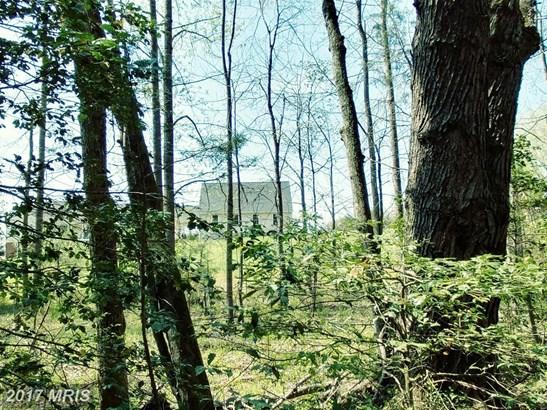 Lot-Land - UNIONVILLE, VA (photo 4)