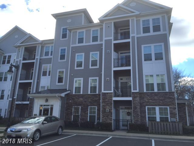 Garden 1-4 Floors, Other - CAPITOL HEIGHTS, MD (photo 1)