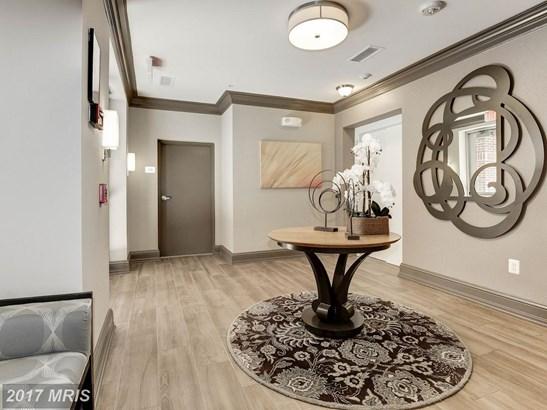 Mid-Rise 5-8 Floors, Colonial - HERNDON, VA (photo 3)