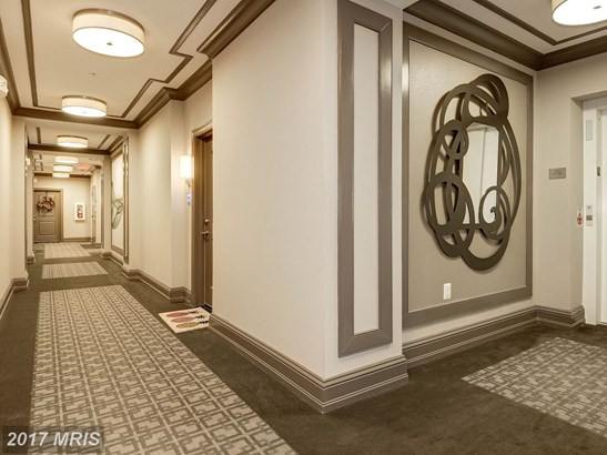 Mid-Rise 5-8 Floors, Colonial - HERNDON, VA (photo 5)