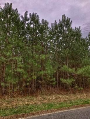 Land/Lots - South Hill, VA (photo 4)