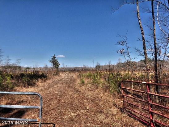 Lot-Land - EDEN, MD (photo 3)