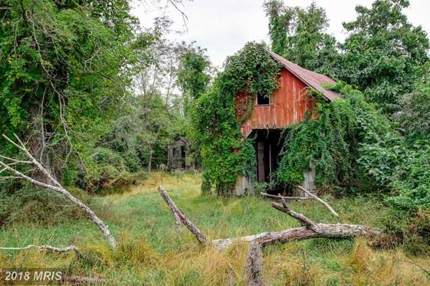 Farm House, Detached - BROOKEVILLE, MD (photo 4)