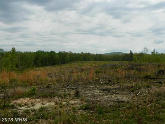 Lot-Land - CULPEPER, VA (photo 1)