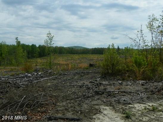 Lot-Land - CULPEPER, VA (photo 4)