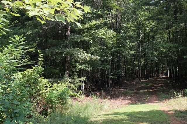Land (Acreage), Lots/Land/Farm - Boones Mill, VA (photo 2)