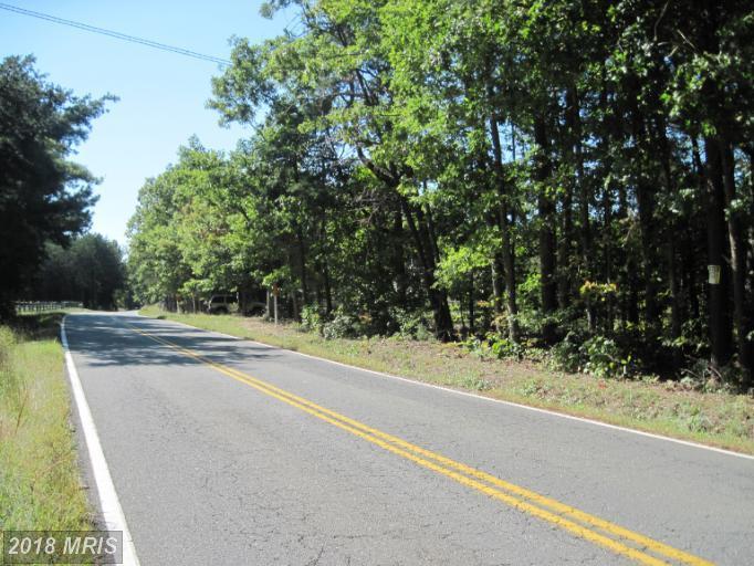 Lot-Land - PARTLOW, VA (photo 2)