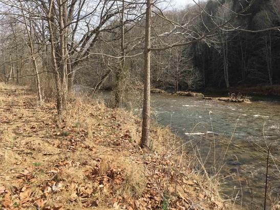 Land - Allisonia, VA (photo 4)