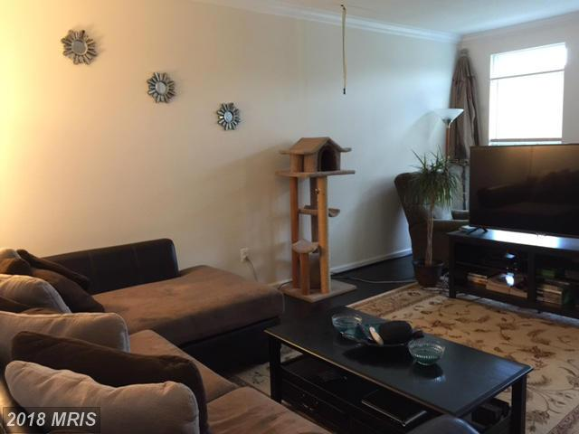 Townhouse, Contemporary - CAPITOL HEIGHTS, MD (photo 4)