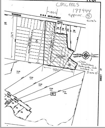 Residential Vacant Lot - Dennisville (photo 1)