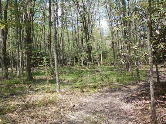 Land (Acreage), Lots/Land/Farm - Waiteville, WV (photo 1)
